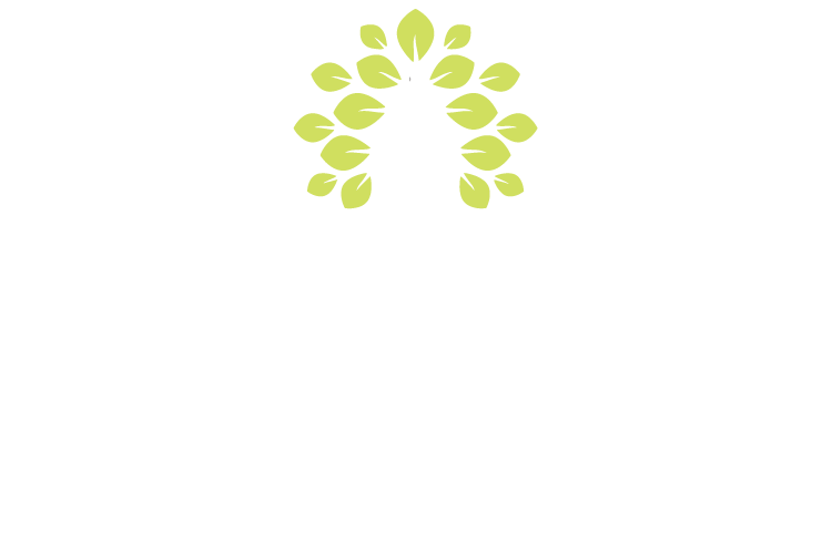About Us - Monaghan Osteopathy - Dominic Treanor